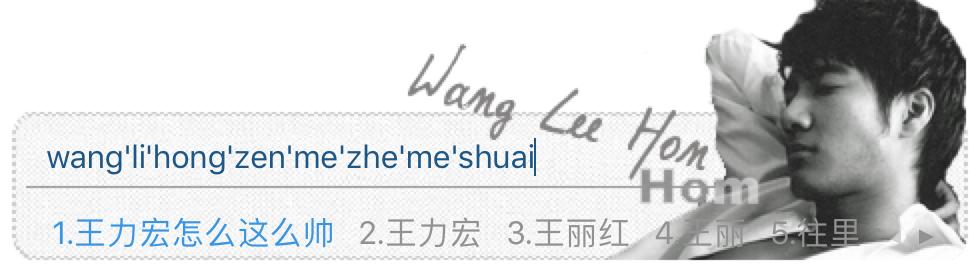Wang Lee Hom Sogou Skin